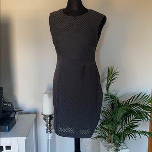 Eci Grey stretch career business dress size 10
